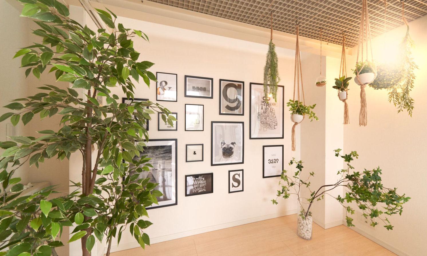 イベントや展示会で植物をレンタルするならグリーンレンタル!